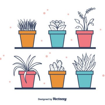 Free vector Free House Plants Vector #21995