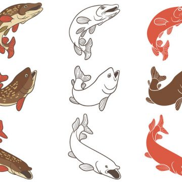 Free vector Free Pike Icons Vector #22346