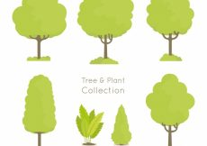 Free vector Pack of hand drawn trees  #19779