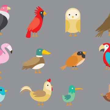 Free vector Cartoon Birds #22128
