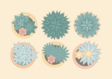 Free vector Vector From Above Potted Plants #22033