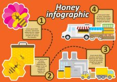 Free vector Honey Infographic #19219