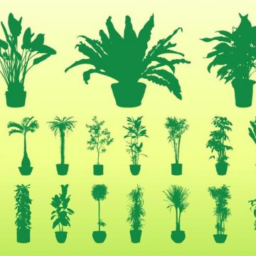 Free vector Potted Plants Silhouettes #22005