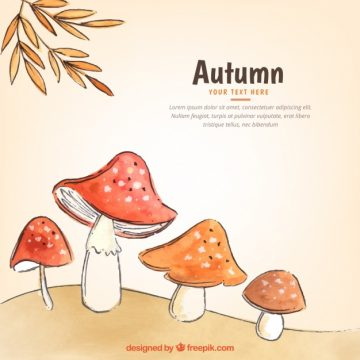 Free vector Watercolor autumnal compostion with mushrooms #22621