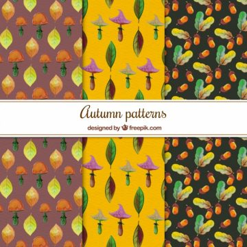 Free vector Watercolor pack of autumn patterns #22549